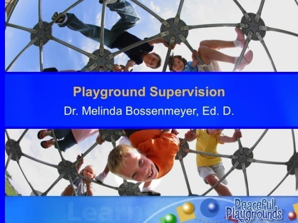 Playgrounds Supervision Course