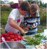 school garden kids